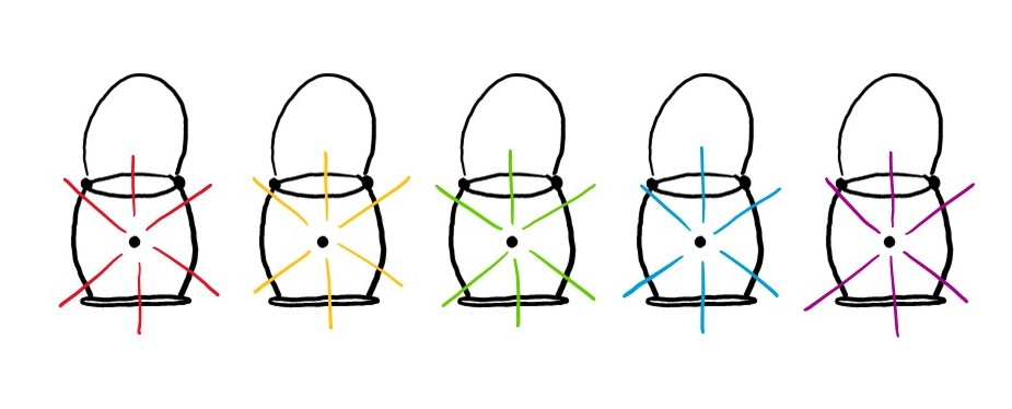 Variants of GFP come in many different colors.
